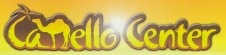 Camello Center Logo