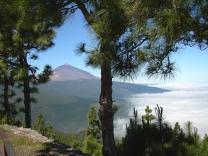 Teide Teneriffa Chipeque